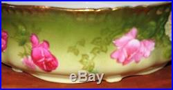Antique HP Ferner Pudding Bowl Roses Enameled Bavaria Artist Signed J. Braun