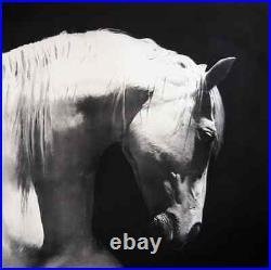 Painting by Yosvany Arango Charcoal on Canvas Original Cuban Art White Horse