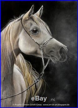 White Arabian Horse Original Colored Pencil Art by Artist A. C. GRIEHL-GROSS